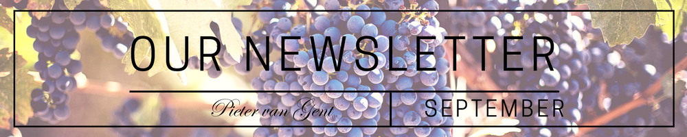 OUR NEWSLETTER (1)